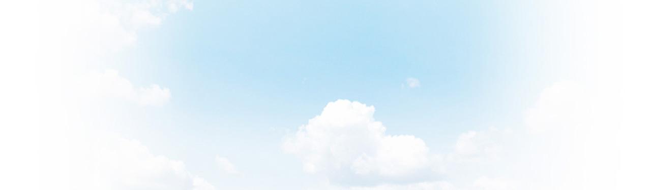 Sky-1